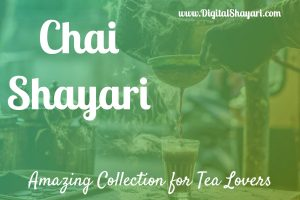 Chai Shayari | Chai Status | Amazing Collection for Chai Lovers | Tea Status